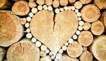 Olej na drevo dodá naturálny vzhľad a zároveň ochráni drevo